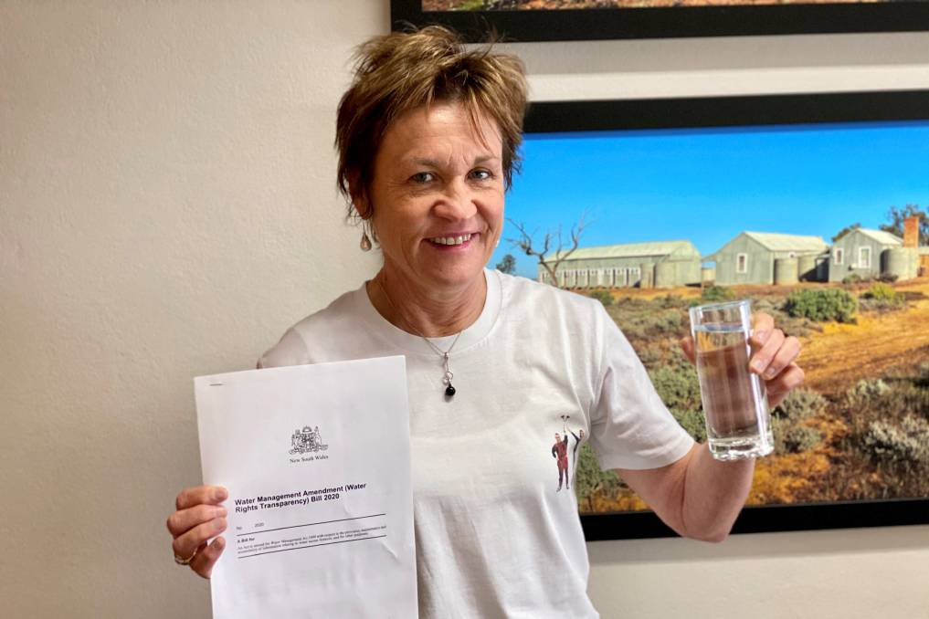 SHOT DOWN: Member for Murray Helen Dalton before the NSW government voted to keep water ownership secret on Thursday. Photo: Contributed